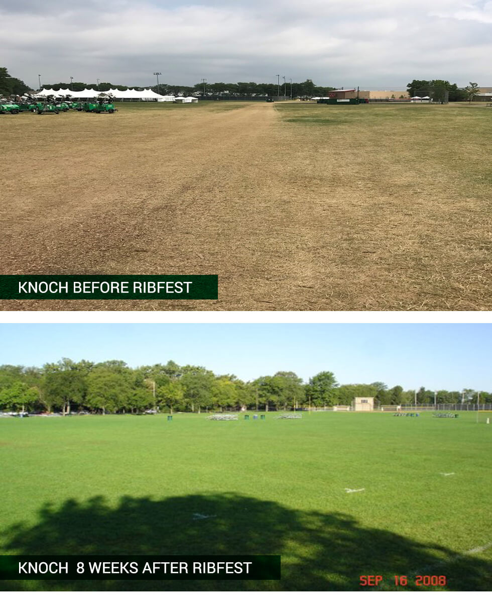 Knoch Park Ribfest